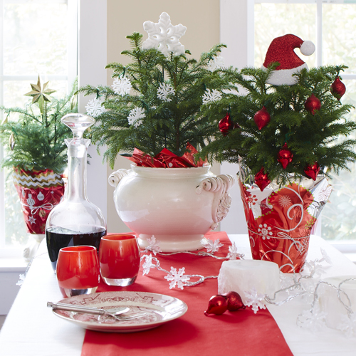 Houseplants Bring A Festive Touch To Any Indoor E And Many Continue Lend Their Good Looks Your Home All Year Long Living Décor Can Be Especially